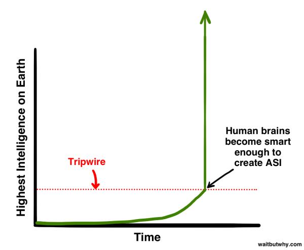 Tripwire 600x494